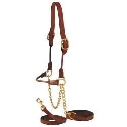 Rolled Show Cattle Halter