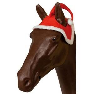 Christmas Horse Santa Hat