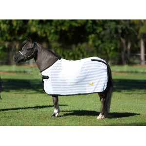 Mini Horse & Pony Products