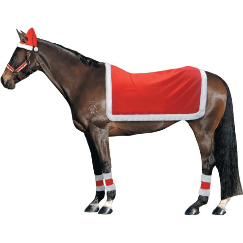 Christmas Horse Riding Set Santa Hat, Quarter Sheet, Leg Wraps, 3 Piece Bridle Set